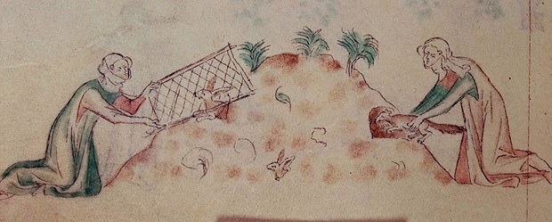 Women hunting rabbits with a ferret. Queen Mary Psalter 14th century